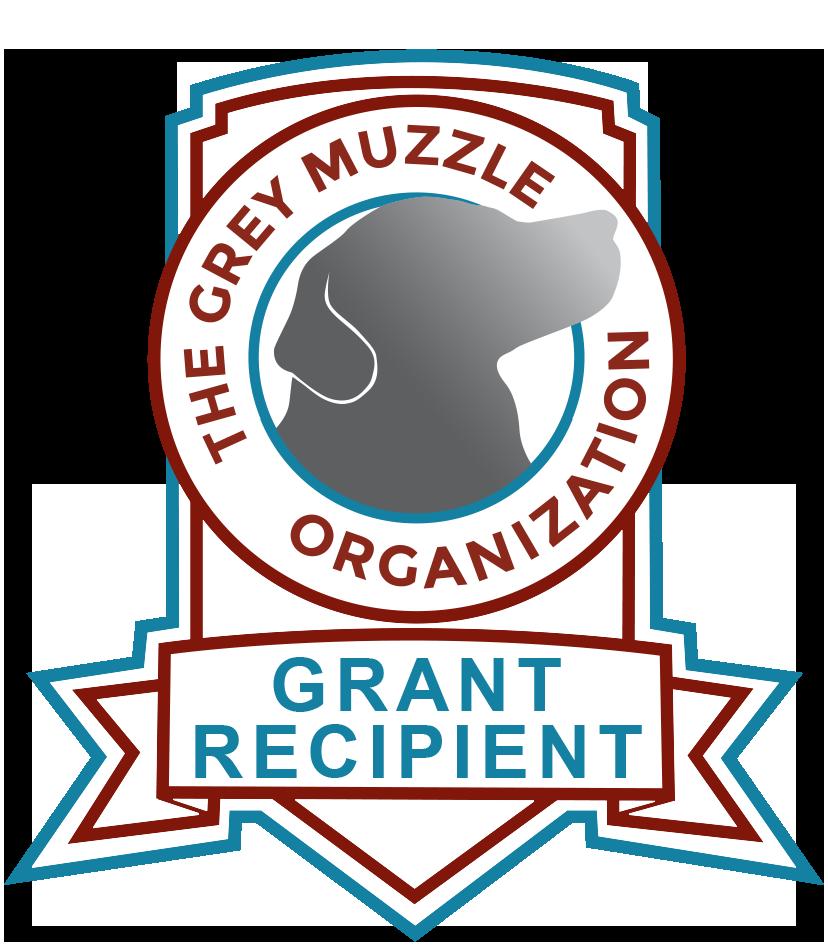 The Grey Muzzle Organization